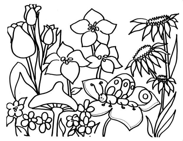 Flori De Primavara Planse De Colorat